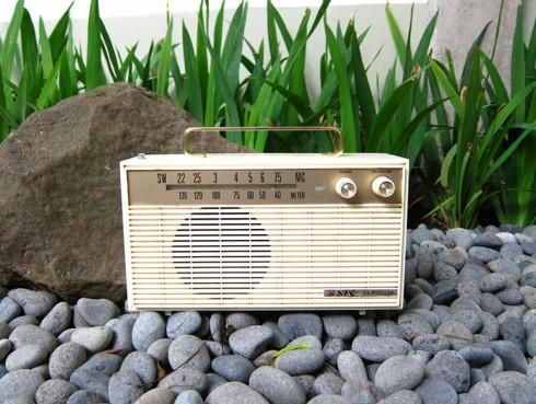 RadioNEC-SW1